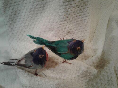 2  FEATHERED BIRD ORNAMENTS DVS