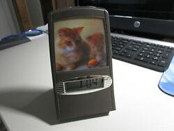 3D ROCKING CAT & KITTEN  ALARM CLOCK (SUPER COOL)