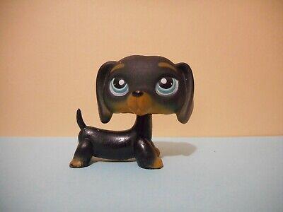 Petshop chien teckel / dachshund dog 325