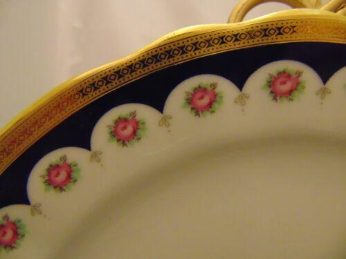 Winterling Marktleuthem Bavaria 9 3/8 in. Dinner Plates BEAUTIFUL