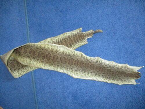 rattlesnake skin prairie rattle snake hide DRY TANNED wrap pen blanks 43 in D4
