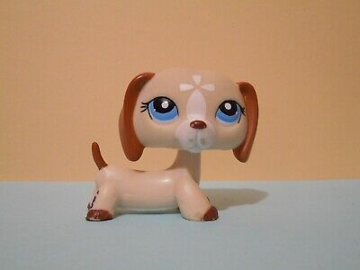 Petshop chien teckel / dachshund dog n°1491