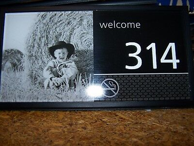 Hampton Inn Pictured Hotel   Motel Room Numbers  314 Boy With Haystack Nice