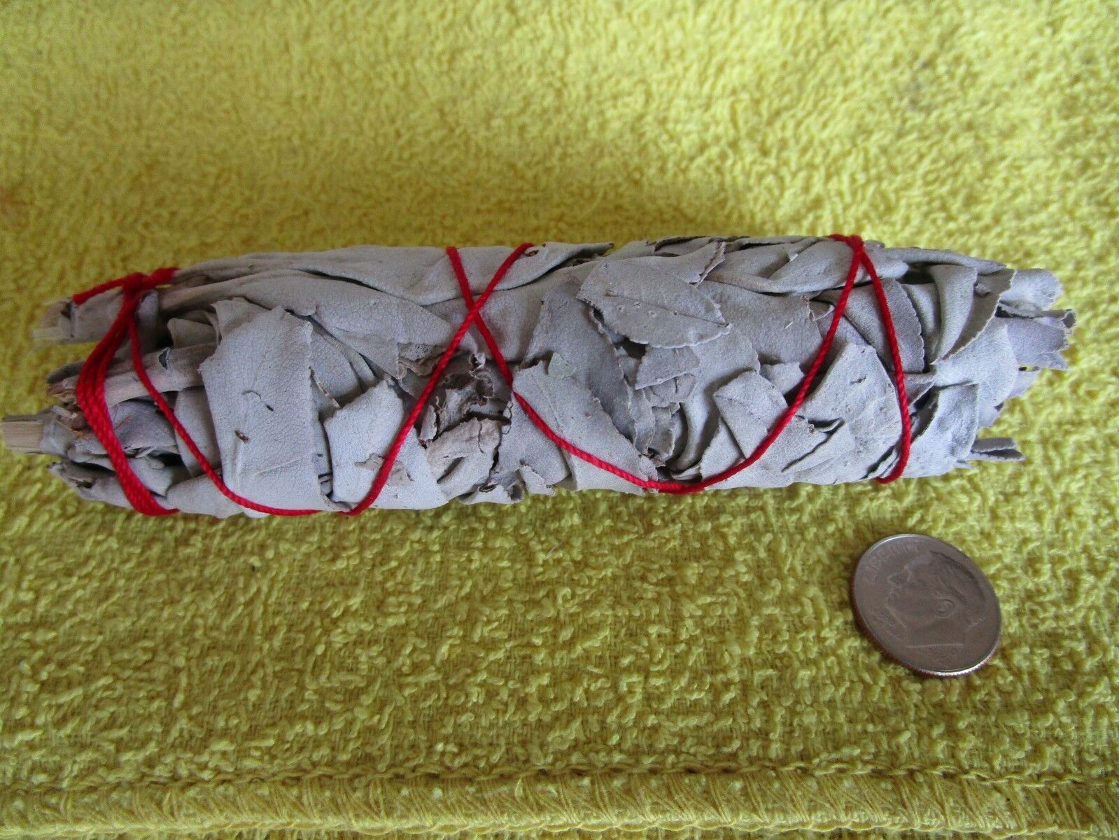"""White Sage Smudge Stick 4"""" - 5"""" House Cleansing Remove Negativity"""