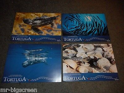 TORTUGA - SET OF 8 ORIGINAL GERMAN LOBBY CARDS