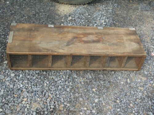 Vintage PA Game Commission Wooden 8 Slot Transportation Box for Rabbits Birds