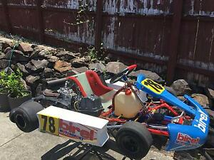 Birel 125 Rotax Push Button Start Racing Go Kart Everything You Need Worongary Gold Coast City Preview