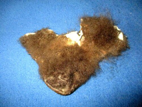 SOFT TANNED buffalo scrotum bison Ball bag odd nutsack gag gift mountain man 1