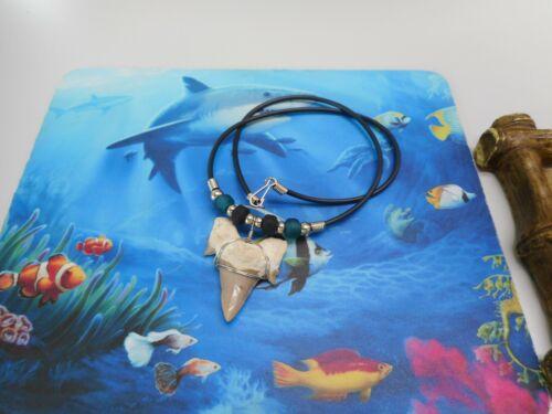 "Genuine 2"" Otodus Fossil Shark Tooth Necklace Beachwear Surf Wear"