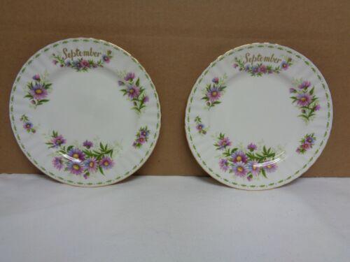"""Lot of 2 Royal Albert September flower of the month Michaelmas Daisy 8"""" plate"""