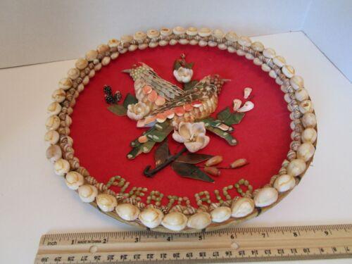 Vintage Puerto Rico Shell Art of Bird in Wooden Wicker tray Souvenir Preowned