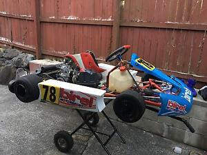 Birel 125 Rotax Push Button Start Racing Go Kart Worongary Gold Coast City Preview
