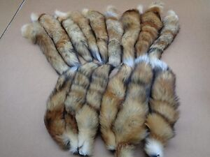 #1 Quality XL Tanned Red Fox Tails/Crafts/Real USA Fur Tails/Harley parts/Purse