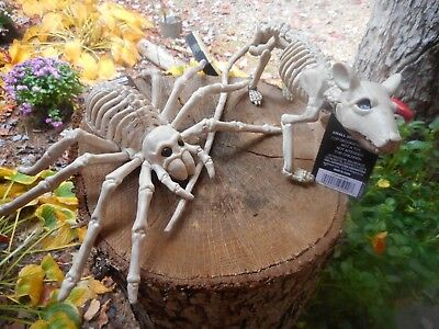 New Small Skeleton Rat and Small Skeleton Spider Plastic Halloween Props ](Small Plastic Skeletons)