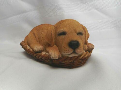 NEW Sleeping Yellow Labrador in Wicker Basket Figurine