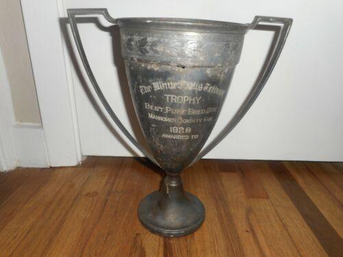 Vintage 1929 MINNEAPOLIS TRIBUNE MAHNOMEN COUNTY FAIR BRED SIRE FARM TROPHY CUP