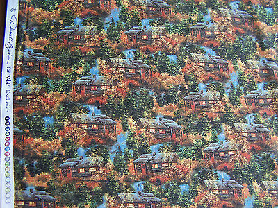 VIP Exclusive Lake House  quilt sew fabric 45393 BO