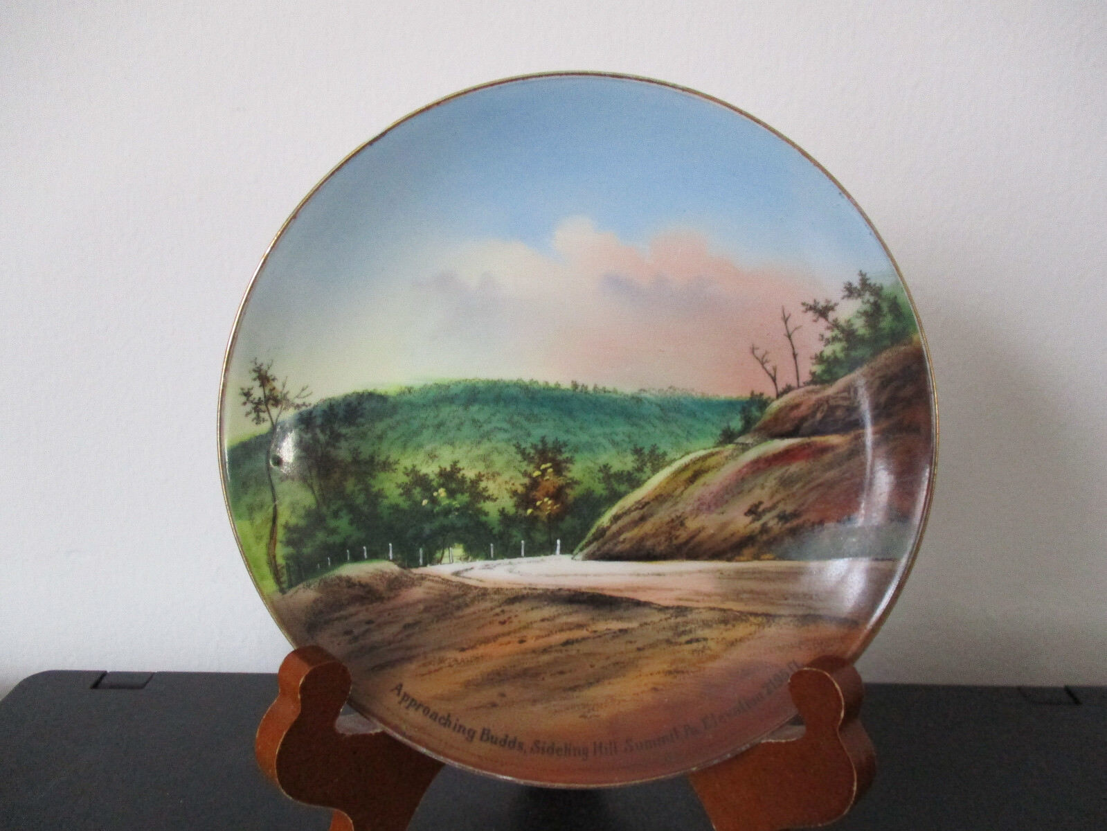 Circa 1910 Souvenir Plate Buds Sideling Hill Summit Breezewood Pennsylvania