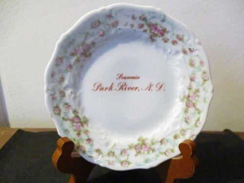 Circa 1910 Souvenir Porcelain Plate Dish Park River North Dakota