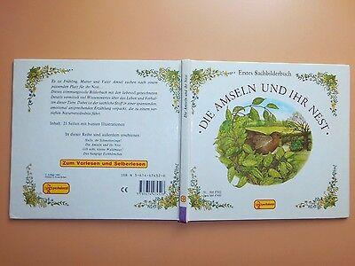 Amseln Tiere (Die Amseln und ihr Nest - Edith Jentner/Tricia Newell-Pestalozzi-Verlag- v. 1990)