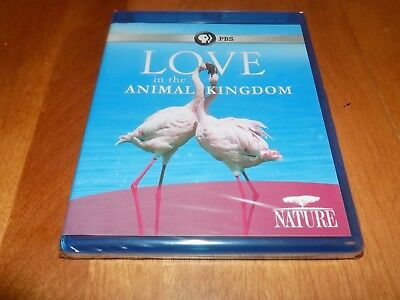NATURE LOVE IN THE ANIMAL KINGDOM PBS Animals Wilds Mammals Birds BLU-RAY NEW