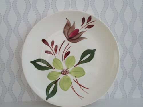 """BLUE RIDGE POTTERY HAND-PAINTED IVORY 9 1/4""""  PLATE Green & Brown Flowers"""