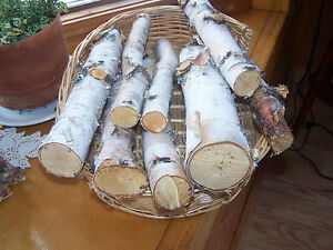 7 White Birch Logs for Decoration or Burning - Aprox 13 1/2 inches long