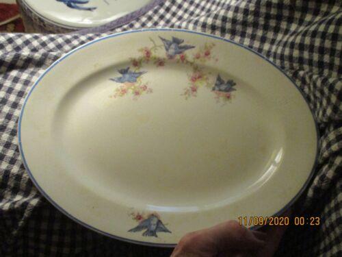 """Hopewell China-11"""" """"Blue Bird""""-Platter-Antique"""