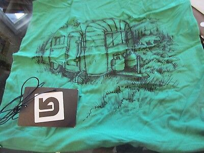 Pottery Barn Teen Graphic green Camper pillow ...
