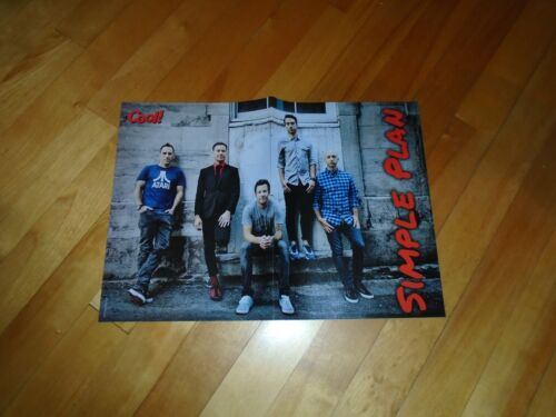 SIMPLE PLAN OR DRAKE   POSTER COLOR  15 BY 11