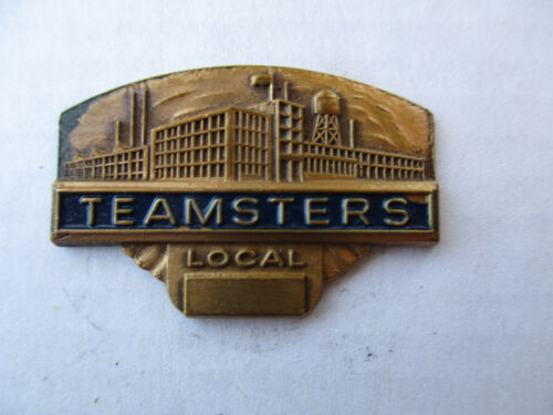 Teamsters Service Safe Driver Award Trucker Trucking Truck Pin