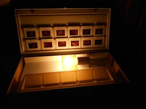 Vintage GLENWOOD Portable SLIDE VIEWER SORTER No S721 Built In Light Metal Case