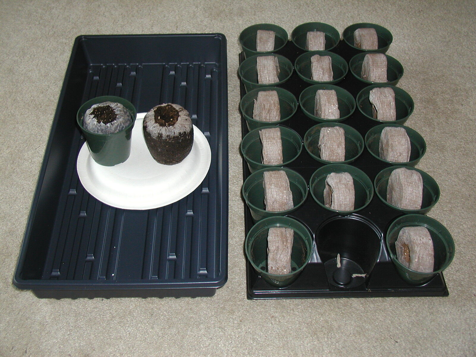 18 (70mm) Jiffy Peat Pellets,18- Flower Pots & 2-trays For Greenhouse Supplies