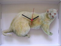 Albino Ferret Wall Clock. And Boxed. - unbranded/generic - ebay.co.uk