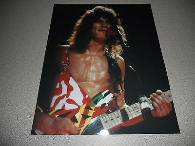 Eddie Van Halen Vintage Live 8x10 Concert Photo #47