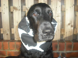 Dog Snood - cocker spaniel - springer spaniel - irish water spaniel