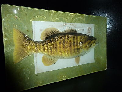BASS FISH DECOUPAGE GLASS TRAY NEW HAND CRAFTED USA