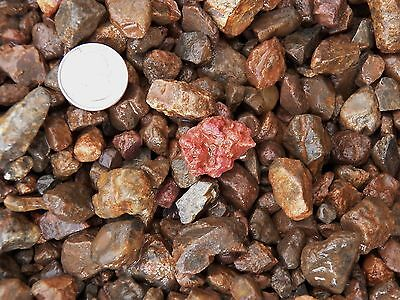 500 Carat Lots of Ruby Rough - Plus a FREE Faceted Gemstone