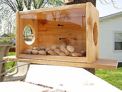 Handmade Cedar Wood See-Thru Squirrel Feeder