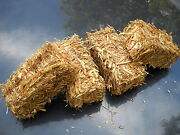 Mini Straw Bales