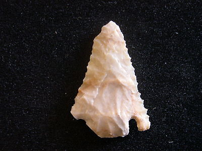 Wicked, Thin, Razor Sharp,Serrated BELL POINT--RARE -WEST TEXAS--TAN CHERT