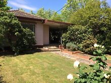 60's retro house in leafy Surrey Hills! Surrey Hills Boroondara Area Preview