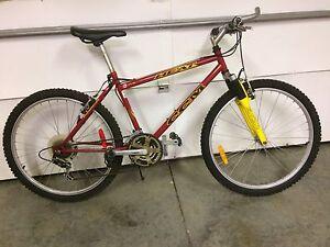 Men's bike 26 inch tires $100