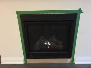 Brand new fire place never used