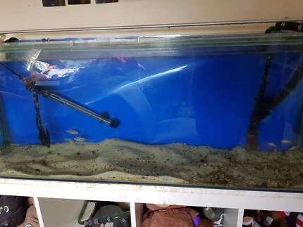 fish tank stands for sale melbourne. 4ft fish tank stands for sale melbourne