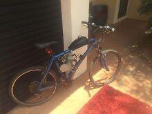 80cc motorised bike Durack Palmerston Area Preview