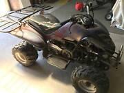 ATV 4 wheeler Killian 150cc Heathcote Bendigo Surrounds Preview