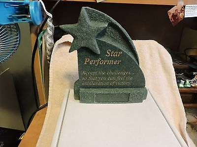 Star Performer Trophy Plaque Ready For Engraving Plate To Be Added New
