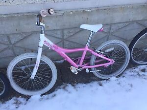 "Girls bike with about 19"" diameter wheels"