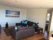 Bondi Beach - Room For Rent Bondi Beach Eastern Suburbs Preview